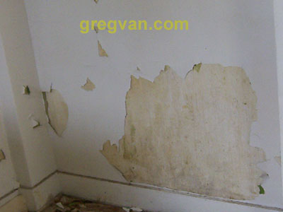 Peeling Paint On Interior Wall