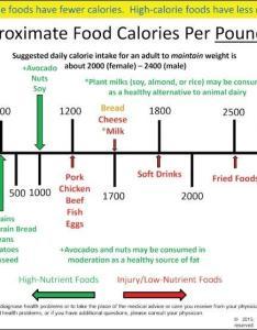 Caloricdensitykaiser also caloric density chart from kaiser  plant based medicine rh drkyle