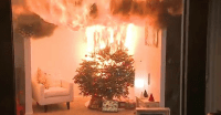 Can you burn your Christmas tree in the fireplace? - Home ...