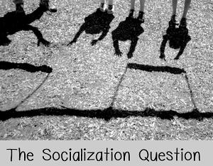 socialization question