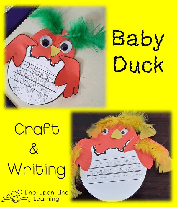 duck craft 2