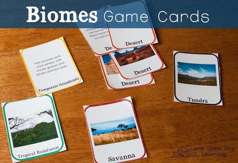 My kids had so much fun swapping biomes cards until someone had two biomes! Then, we compared and contrasted the biomes that won the game.