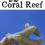 Hands-On Learning Ideas for the Coral Reef