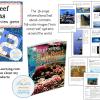 Coral Reef DEMO Slide1