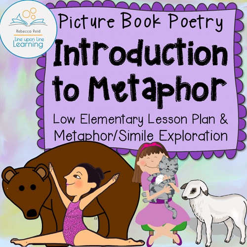 intro to metaphor cover