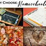 Why Choose Homeschooling?