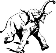 elephant-running-line-drawing