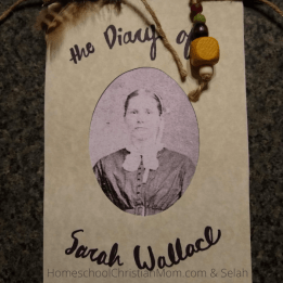 A homemade diary with stick, feather, and bead top. This small scale diary made by 4th graders says THe Diary of Sarah Wallace and has a picture of a lady in vintage costume on the front.