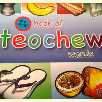 My First Book of Teochew Words