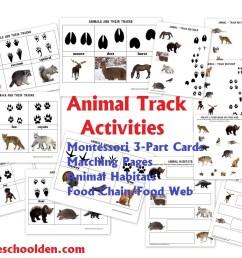 Animals and Their Characteristics (Free Worksheet) - Homeschool Den [ 820 x 1024 Pixel ]