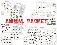 worksheet. Classification Of Animals Worksheet. Grass ...