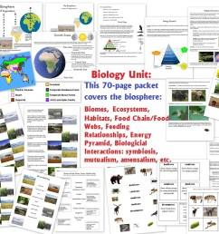 World Biomes Pin Map - Homeschool Den [ 820 x 1024 Pixel ]