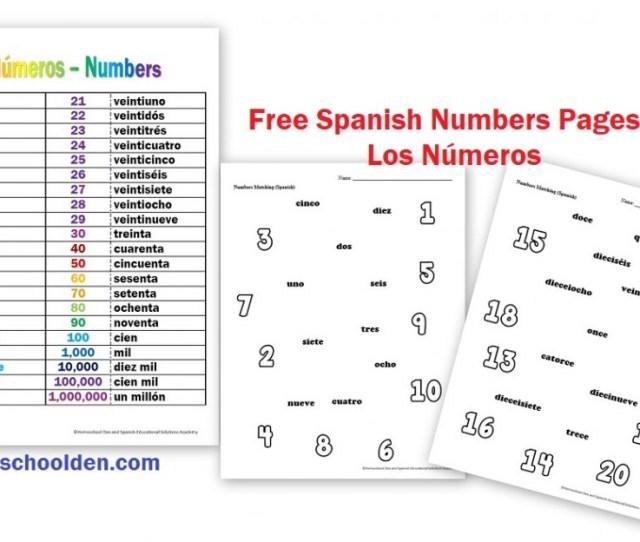 Los Numeros Spanish Numbers Free Worksheets