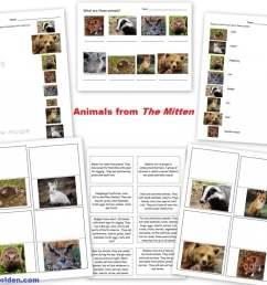 Animals and Their Characteristics (Free Worksheet) - Homeschool Den [ 828 x 1024 Pixel ]