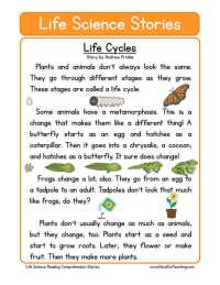 6th Grade  6th Grade Science Worksheets Printable ...