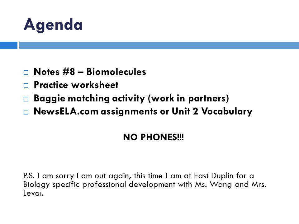 Biomolecules Worksheet