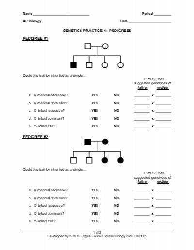 Genetics Pedigree Worksheet
