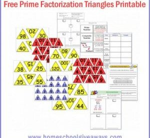 Prime Factoring Triangles by sproutingtadpoles.com