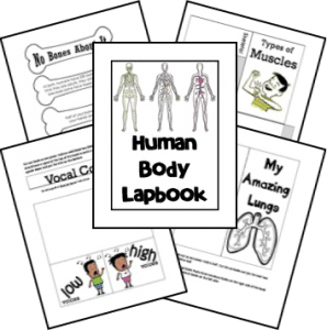 70+ Human Body Resources