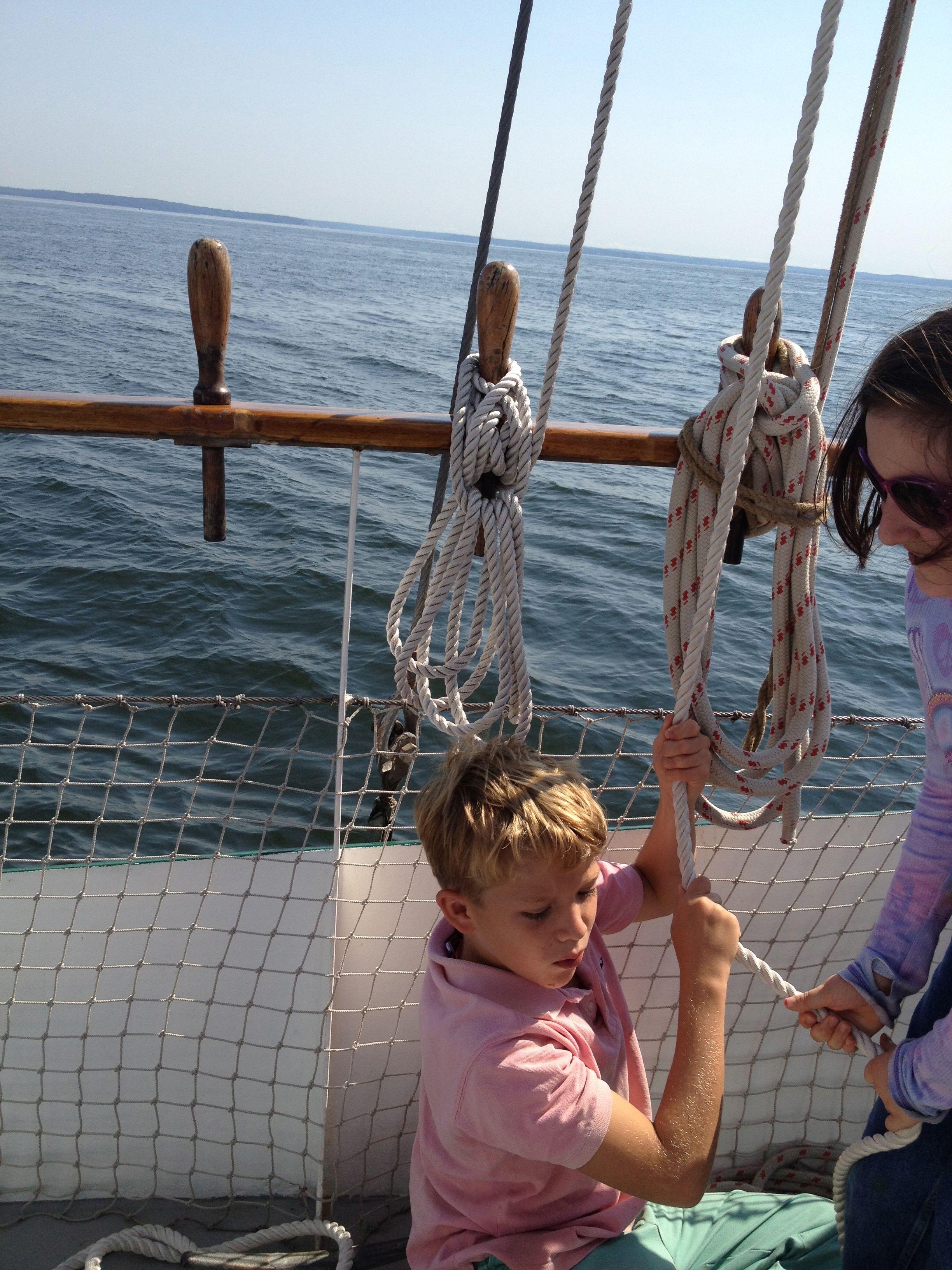 Marine Biology Lessons For Kids