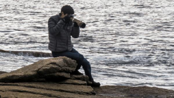 Davey Walters: Teen Takes Flight with Birding Hobby