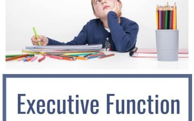 What is Executive Function Weakness?