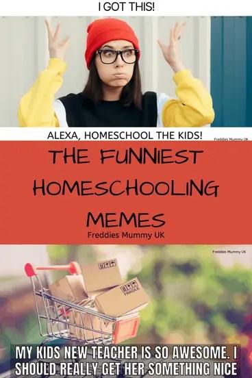 The funniest homeschooling memes