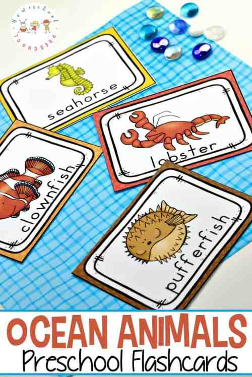 small resolution of Free Printable Ocean Animals Flashcards for Preschoolers