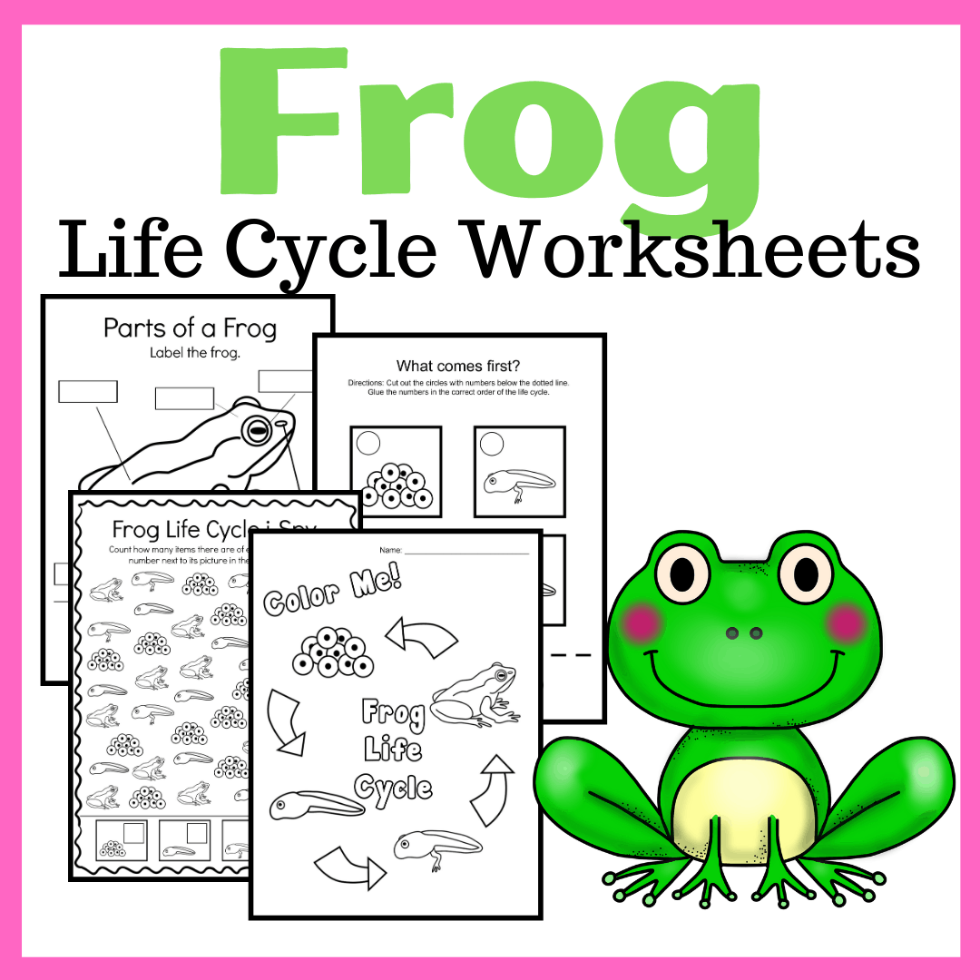 Printable Frog Life Cycle Preschool Activities
