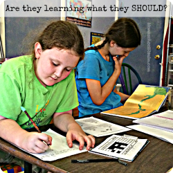 Are they learning what they should?