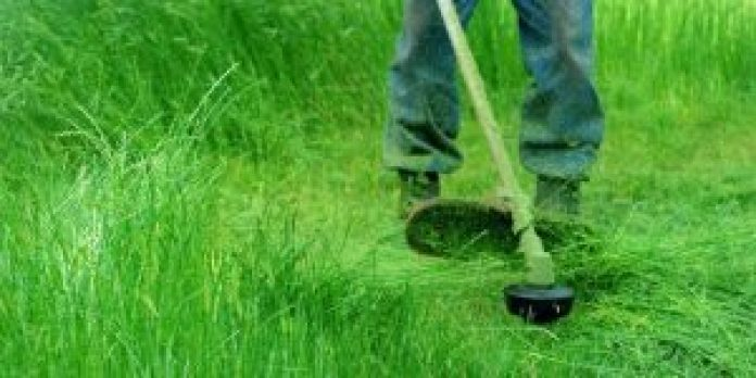 Battery-powered grass Strimmers