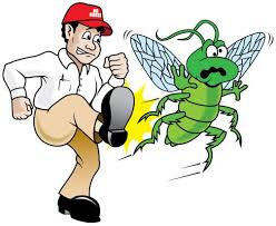 Marketing for Pest Control Companies | SEO | Web Design | PPC Management