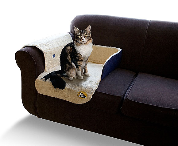 clean sofa with baking soda faux leather sleeper twin tips in cleaning cat mess on | home services guides 101