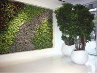 Nice Concept for Indoor Tree Planter Box | HomesFeed