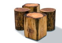 Natural Tree Stump Side Table Brings Nature Fragment into ...