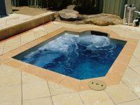 Attractive Treatment Plunge Pool Design   HomesFeed