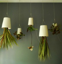 Make Interior With Remarkable Hanging Plants