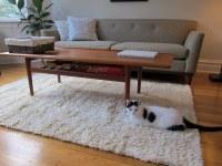 IKEA Shag Rug Options   HomesFeed