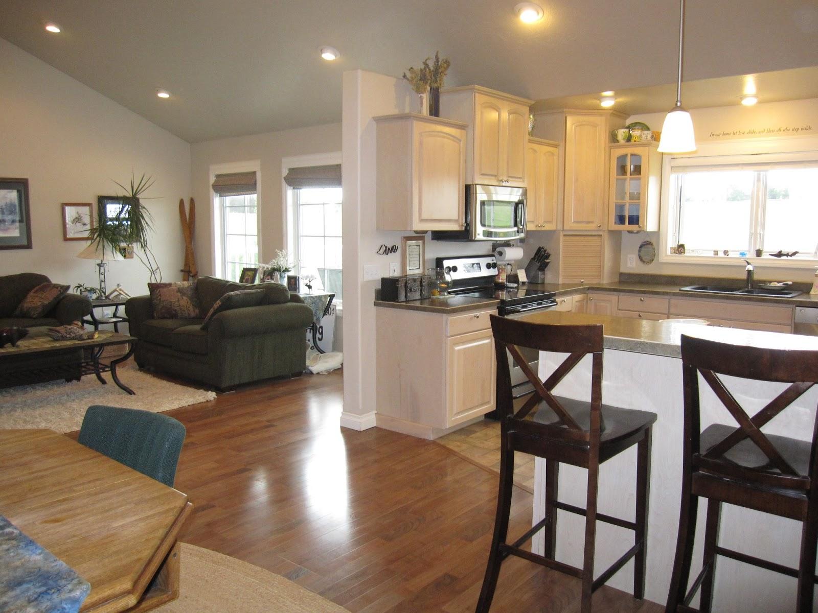 Kitchen Living Room Combo Ideas  HomesFeed