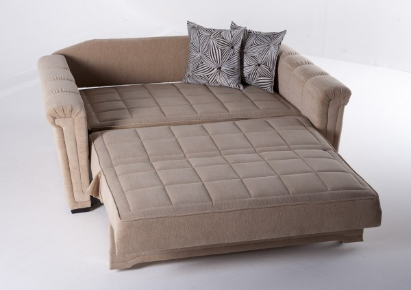 Loveseat Sleeper Sofas for Small Spaces