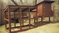 Making A Chicken Coop | HomesFeed