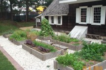 Kitchen Herb Garden Design