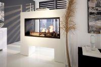 See Through Electric Fireplace   HomesFeed