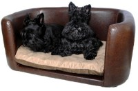 Stylish Dog Beds for Your Lovely Dogs | HomesFeed