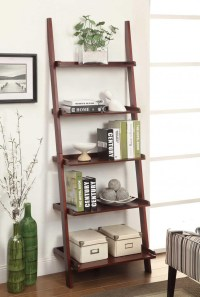 Contemporary Ladder Bookshelves Ideas for Unique Interior ...