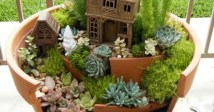Indoor Succulents Planters Idea