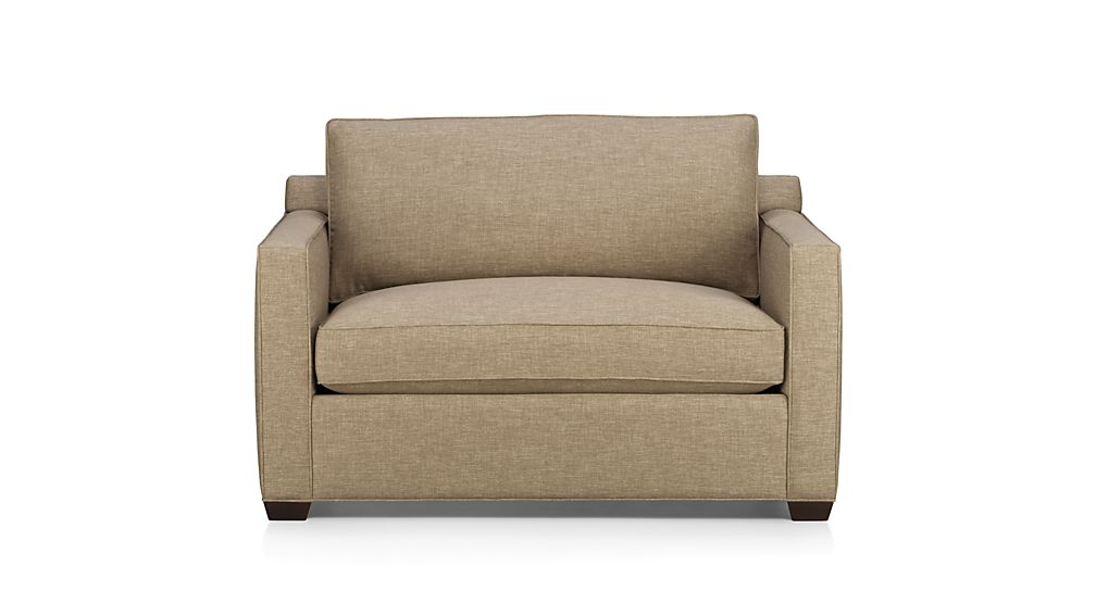 Twin Size Sleeper Sofa  HomesFeed