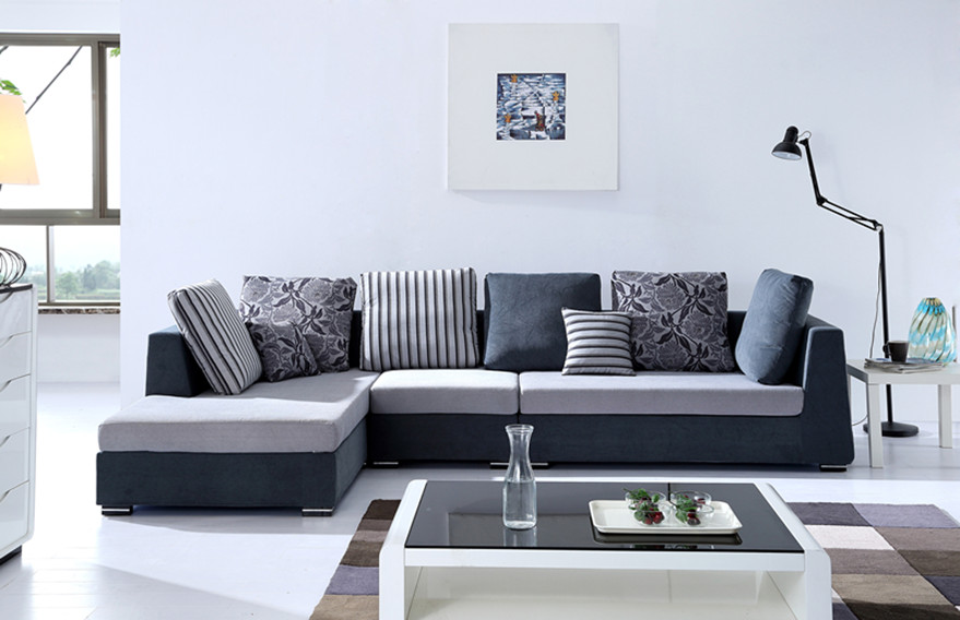 Sofa Designs for Living Room  HomesFeed
