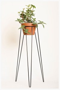 Tall Plant Stands: Decorative and Functional Tool for ...