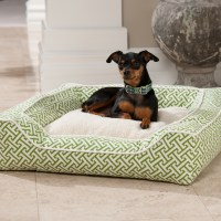 Stylish Dog Beds | HomesFeed